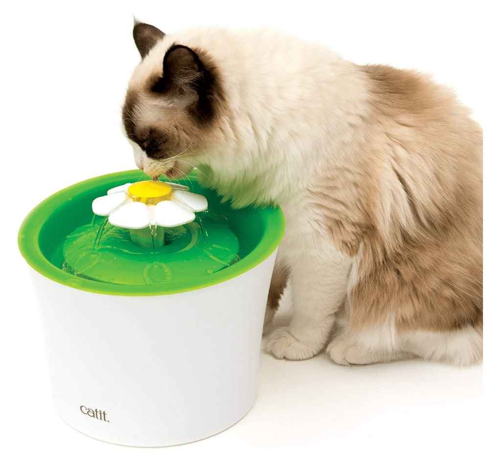 cat-drinking-from-catit-water-fountain