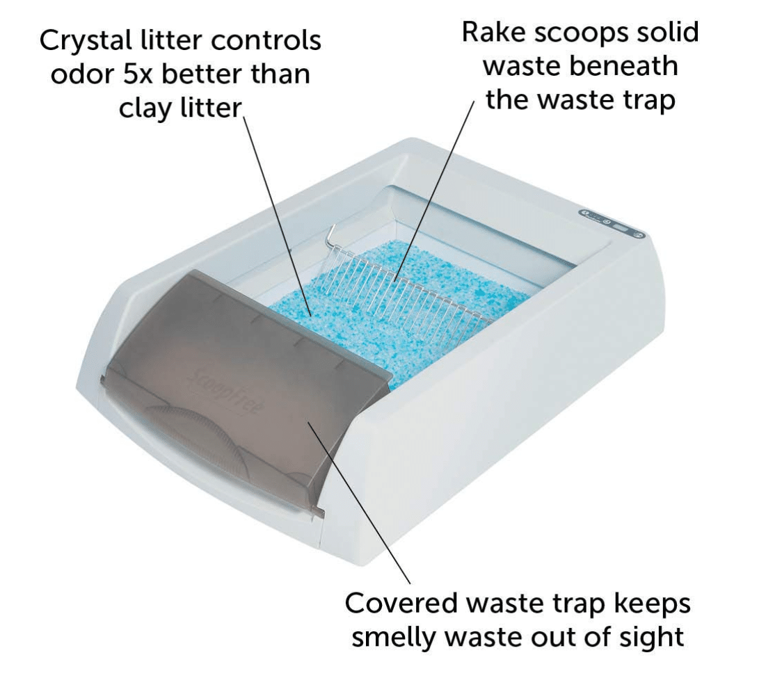 petsafe-scoopfree-automatic-litter-box