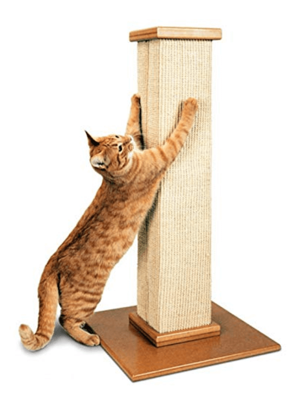 smartcat_ultimate_scratching_post