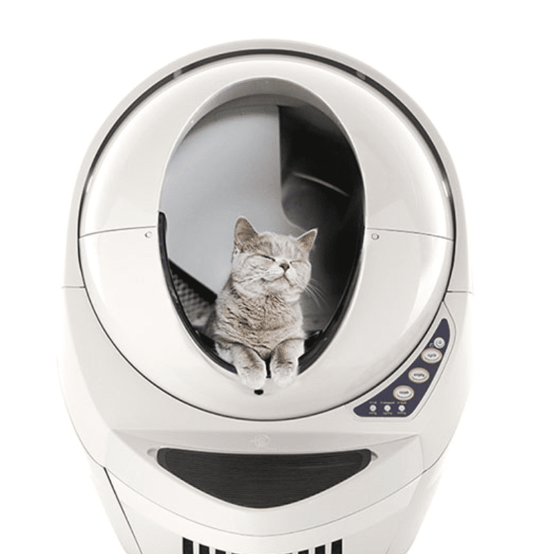 kitten_pooping_in_the_litter_robot