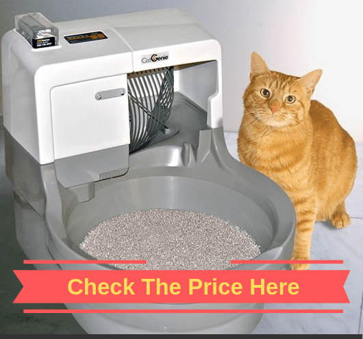 cat_genie_self_washing_litter_box